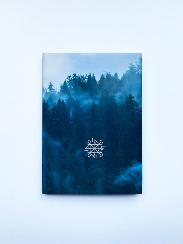 Our Failing Shadows by Alexander Menid